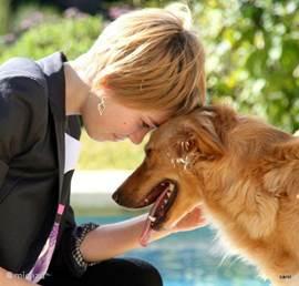 Ginger is gek op kinderen en kinderen op haar.Ik hoor vaak dat mensen na hier te zijn geweest,ook aan honden ´begonnen zijn´.