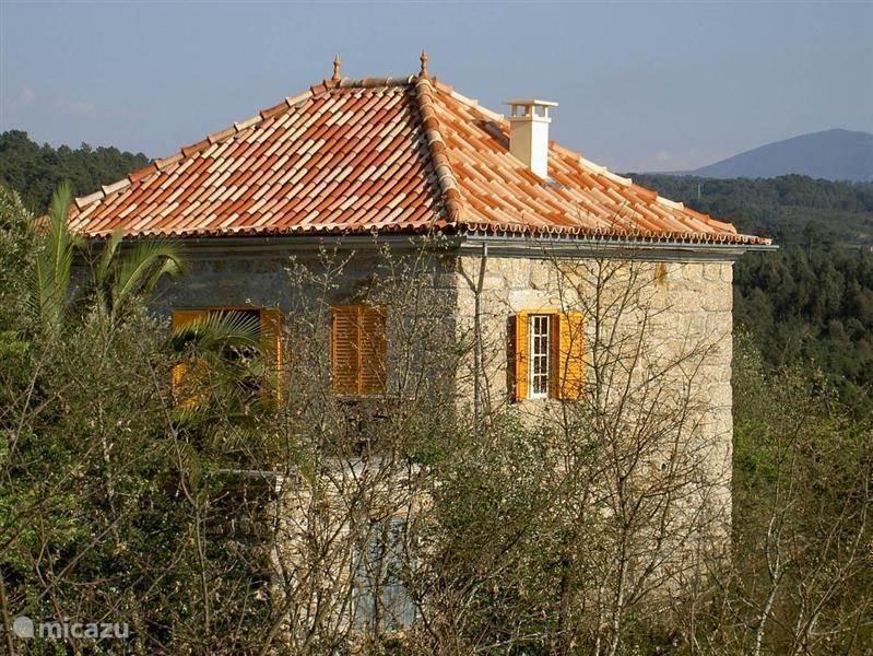 Vakantiehuis Portugal, Beira, Vila Nova De Oliveirinha landhuis / kasteel Quinta Da Mamadeira
