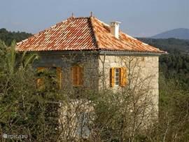 Prachtig Landhuis in het groene hart van Portugal!