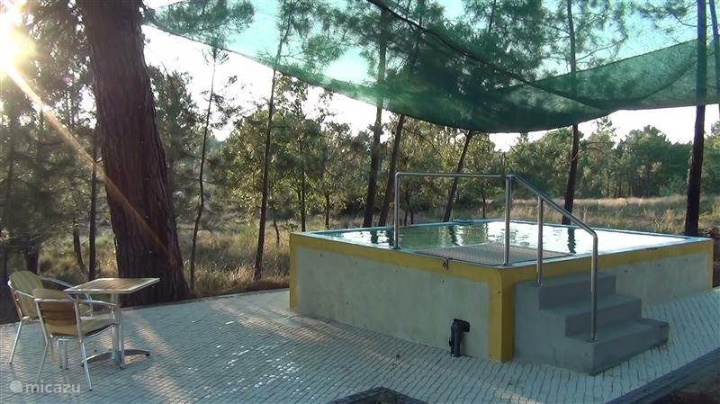 Vakantiehuis Portugal, Beiras, Vila Nova De Oliveirinha Landhuis / Kasteel Quinta Da Mamadeira