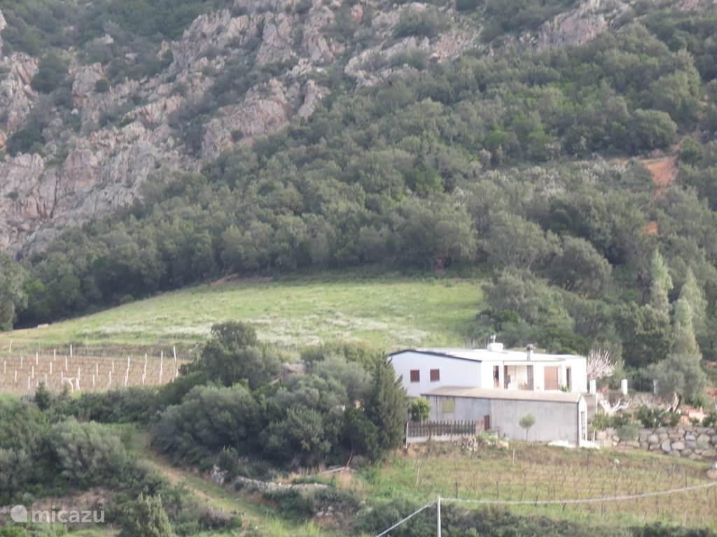 Vakantiehuis Italië, Sardinië, Lanusei Vakantiehuis Domus Pisano
