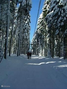 drag lift in Pernink (3 km)