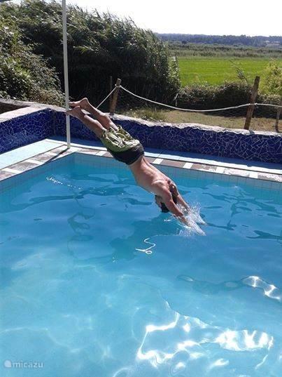 Het zwembad is niet zo groot, maar wel diep genoeg om in te duiken.