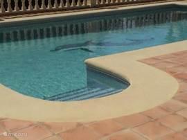 Romaanse trap geeft toegang tot zwembad