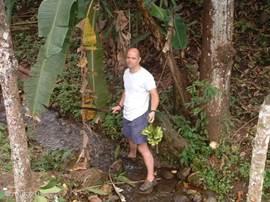 Bananen uit eigen tuin