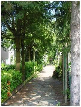 Dit is een van de twee laantjes - de tuin heeft een voor- en een achteringang - die van de parkeerplaats naar het huis leiden.  Bij het huis hoort een eigen parkeerplaats. De afstand is iets van 10 meter.
