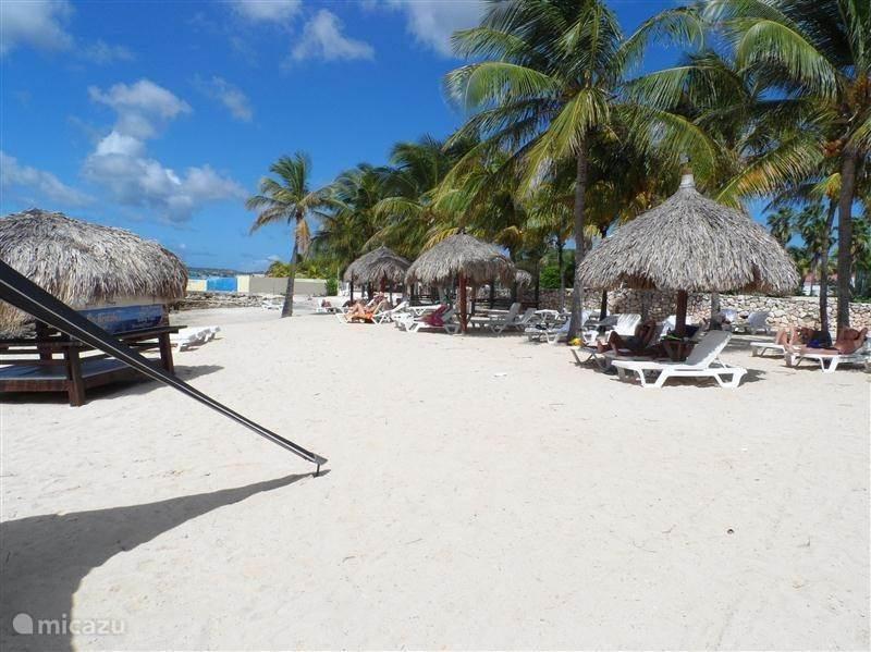 Vakantiehuis Bonaire, Bonaire, Kralendijk Bungalow Bon Kas  SPECIALS!!