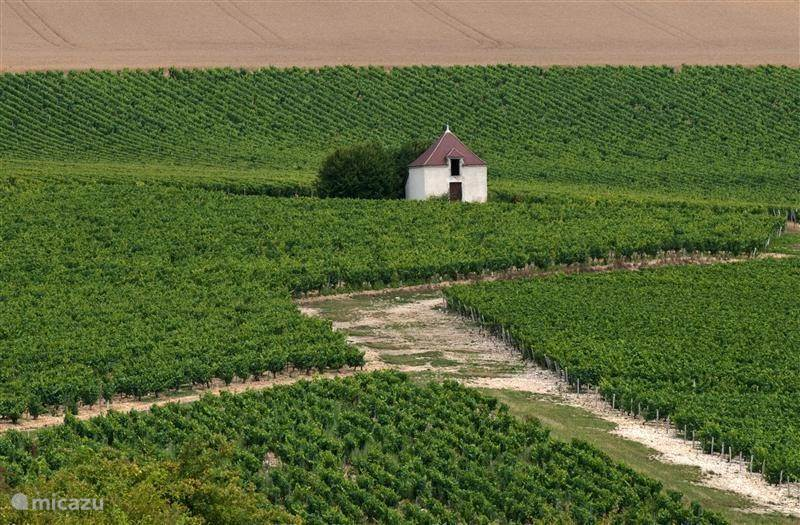 Routes through the beautiful burgundy