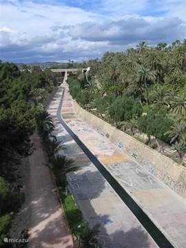 De rio vinalopo gaat dwars door de stad Elche, aan weer kanten de palmen. Via bruggen kan je op verschillende niveau's naar de andere kant.Velen joggen,wandelen in het kanaal die meestal droog is.