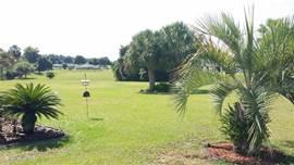 Het weidse en vrije uitzicht vanaf het terras aan de achterkant van de villa.