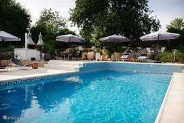 Het zwembad is een plek van ontspanning en rust. Veel mogelijkheden om je eigen plekje te zoeken. Lekker in de zon? Geniet van de comfortabele ligbedden. Of zoek een plekje in de schaduw onder de eeuwenoude olijvenboom. Net terug van een bezoek aan een van de prachtige lange zandstranden...even heerlijk bijkomen aan de rand van het zwembad. Eventueel onder het genot van een hapje van de barbecue of een drankje uit de koelkast bij het zwembad. Genieten ten top!