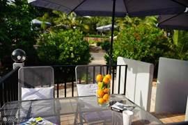 Vanaf het terras loop je direct de tuin in naar het zwembad.