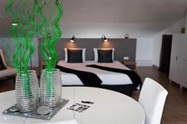 Penthouse appartement: ruim, royaal dakterras. Van alle gemakken voorzien.