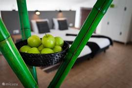 Penthouse appartement: eigen stijl, kleurvol