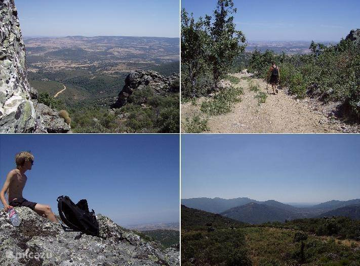 De Montes de Toledo