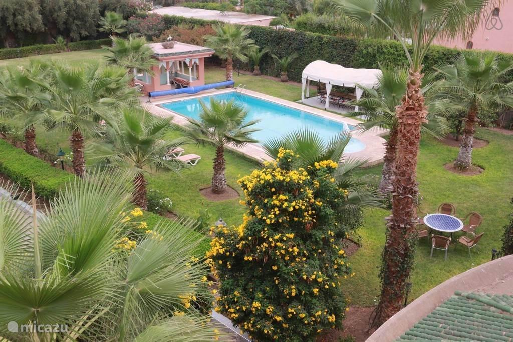 Overzicht van de tuin met het zwembad