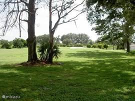 uitzicht achter de villa. Lekker vrij met uitzicht over de golfbaan. Kraanvogels, eekhoorntjes en loslopende golfers bepalen hier een beetje het dagelijksbeeld.