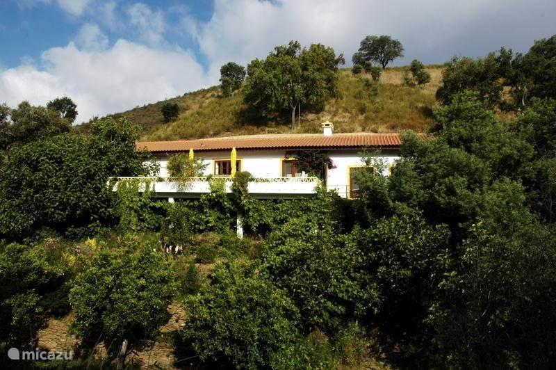Vakantiehuis Portugal, Alentejo, São Martinho Das Amoreiras vakantiehuis Casa Amarela