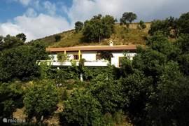 Aanzicht van Casa Amarela