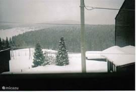 uitzicht vanuit vakantiehuis