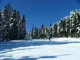 skipiste in Pernink (3 km)Het skigebied hier heeft, verspreid over twee dicht bij elkaar gelegen locaties, 5 skiliften, een kindersleeplift, 6 skipistes, 50 km aan langlaufloipes, een skischool en skihuurmogelijkheden. Bovendien kun je er 's avonds skiën op de verlichte piste en is er een goede park