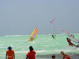 At Lac Bay is the spectacular windsurfing: knee deep warm water and good wind for beginners as well as (very) advanced