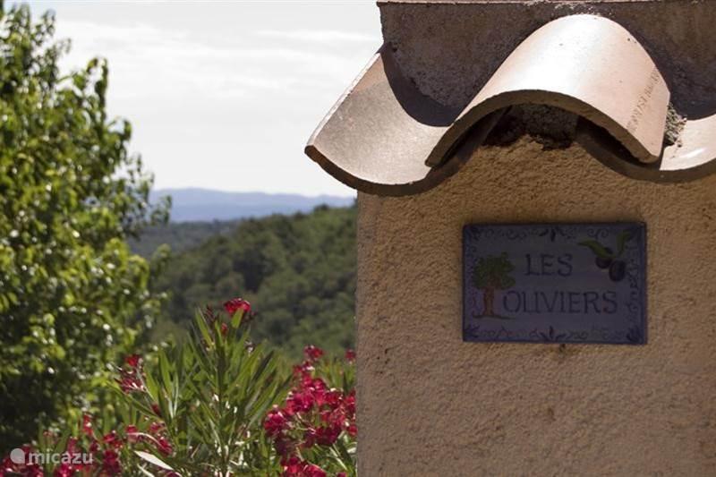 Vakantiehuis Frankrijk, Côte d´Azur, Seillans Villa Les Oliviers