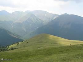 of een mooie autotocht door de bergen.