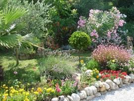onze fleurige zijtuin