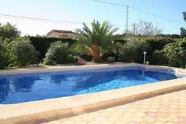 Het vrijgelegen privé zwembad, met daarom heen een groene haag van cypressen, palmen en typische Spaanse planten.