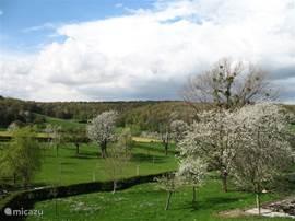 Panoramisch vergezicht over de schilderachtige Limburgse heuvels ... dit is uw uitzicht direct vanuit de woonkamer van het appartement en het aangrenzende terras!