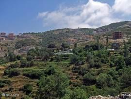 Manzara is gelegen in een heerlijk rustige groene omgeving