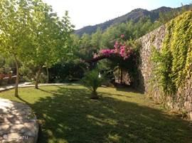 Tuin bij de villa met op de achtergrond uw eigen  carport.