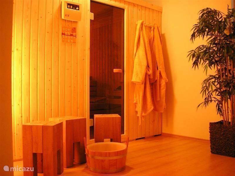 Een ruime finse sauna.