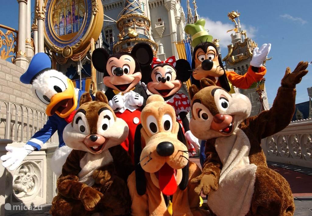 Disney - alle parken