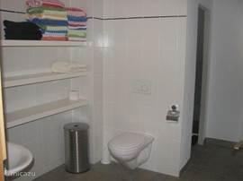 deel van de badkamer beneden; links-achter de sauna; rechts achter de dubbele douches