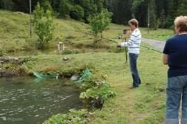 Forel vissen bij Rosalie