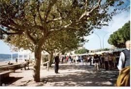 Zondags markt op de Boulevard