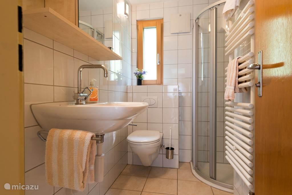 De doucheruimte met toilet, wastafel en toiletkast