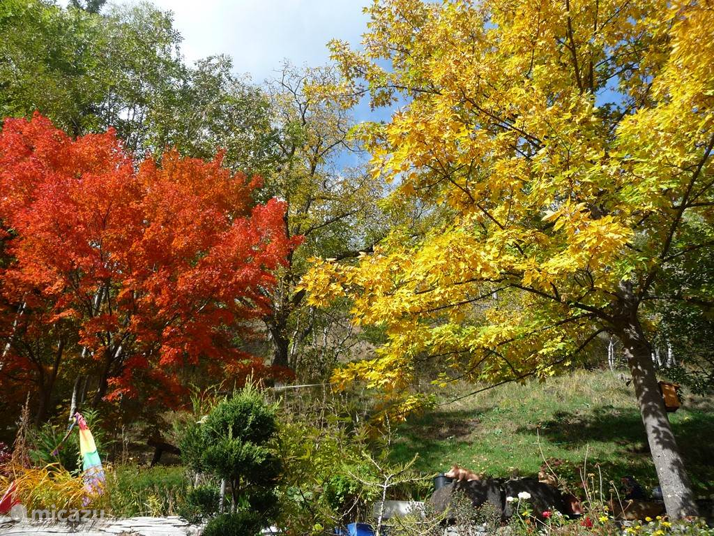 De herfst kent de mooiste kleurschakeringen.