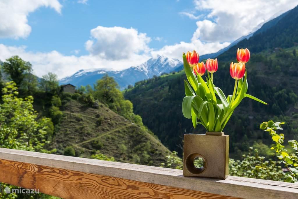 Uw panoramisch zicht op de Walliser Alpen richting Furka