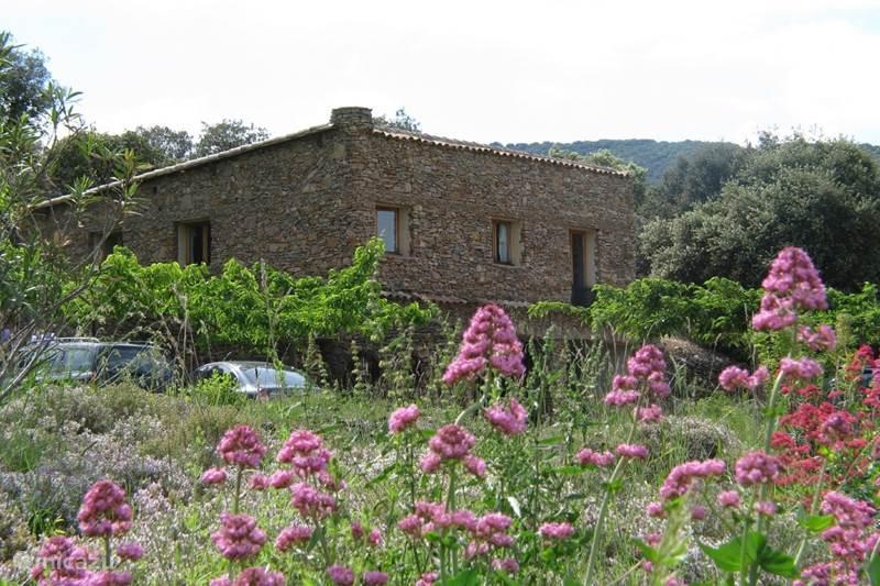Vakantiehuis Frankrijk, Gard, Molières-sur-Cèze Vakantiehuis 4-Jaargetijden huis voor 6 pers.