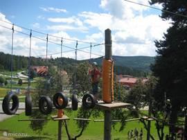 Een ideale plek voor sportieve mensen die willen mountainbiken, squashen, tennissen, bowlen. Sinds kort is er een kompleet nieuw adrenaline park waar men kan klimmen, klauteren en abseilen