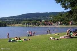 Lipno meer met tal van watersportmogelijkheden zoals zeilen, waterfietsen, vissen, electro boot, rondvaart