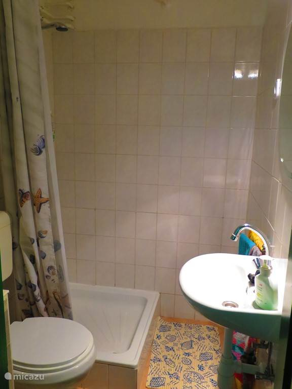 The second bathroom is accessible from the living room, with shower and toilet.