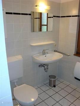 Badkamer voorzien van douche, toilet en wastafel. In de hal bevindt zich een tweede toilet met wastafel.