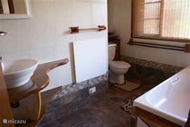 Beneden badkamer: net vernieuwd!