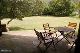 Heerlijke terras - hier zie je vogels, herten en bushpigs voorbijgaan.
