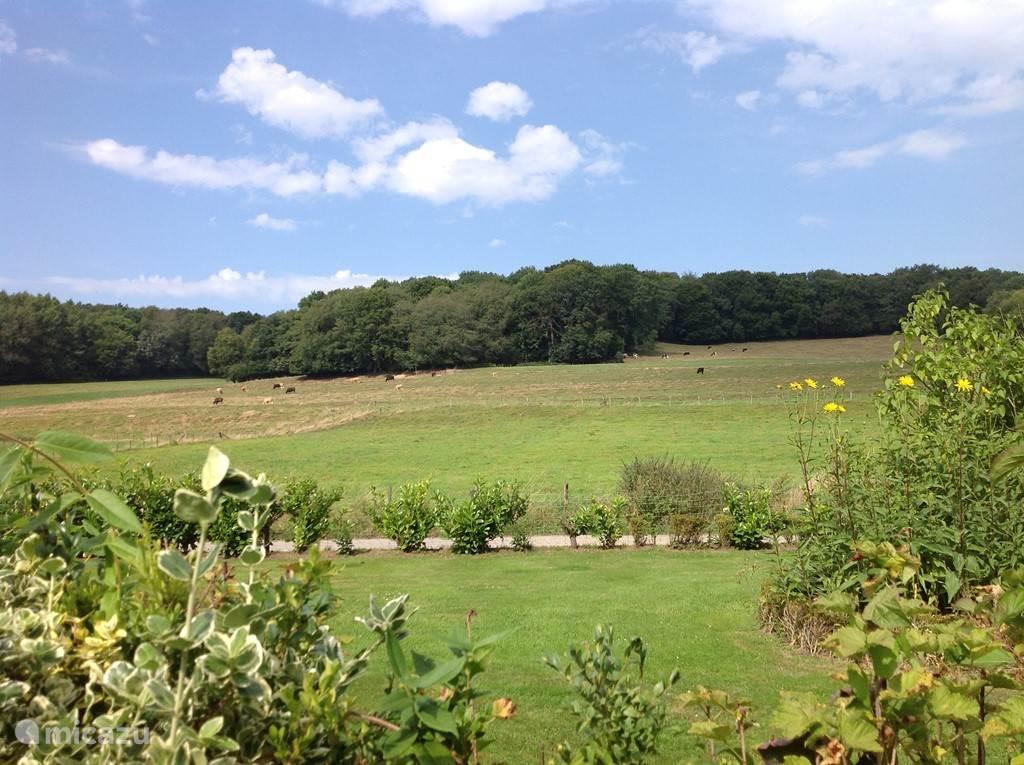 vanuit onze tuin heb je dit uitzicht.