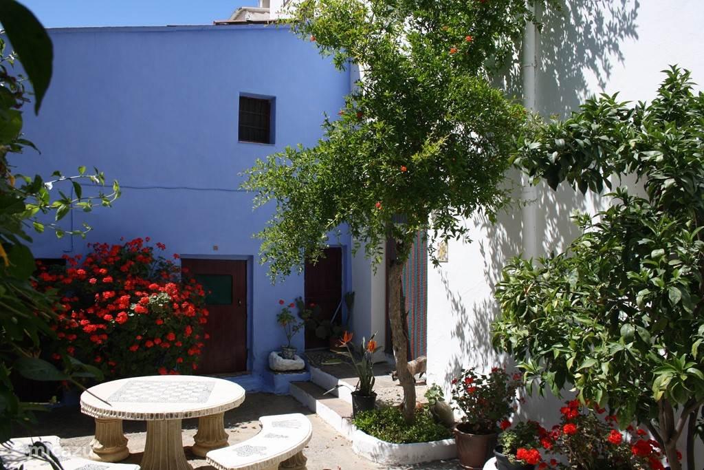 Patio van onze vakantiewoning La Alcandora ligt in het witte Andalusische dorp Sorvilán. Een dorpje tussen de bergen en de Middelandse zee. De ruime sfeervolle woning (ca. 200 m2) is luxe ingericht, heeft een zonnige patio en biedt slaapplaatsen voor 4 a 5 personen